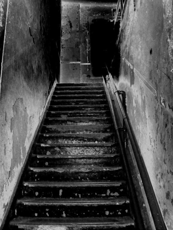 Richtige Wahl bei der Treppenrennovierung